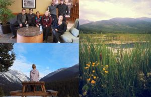 Valemount Group