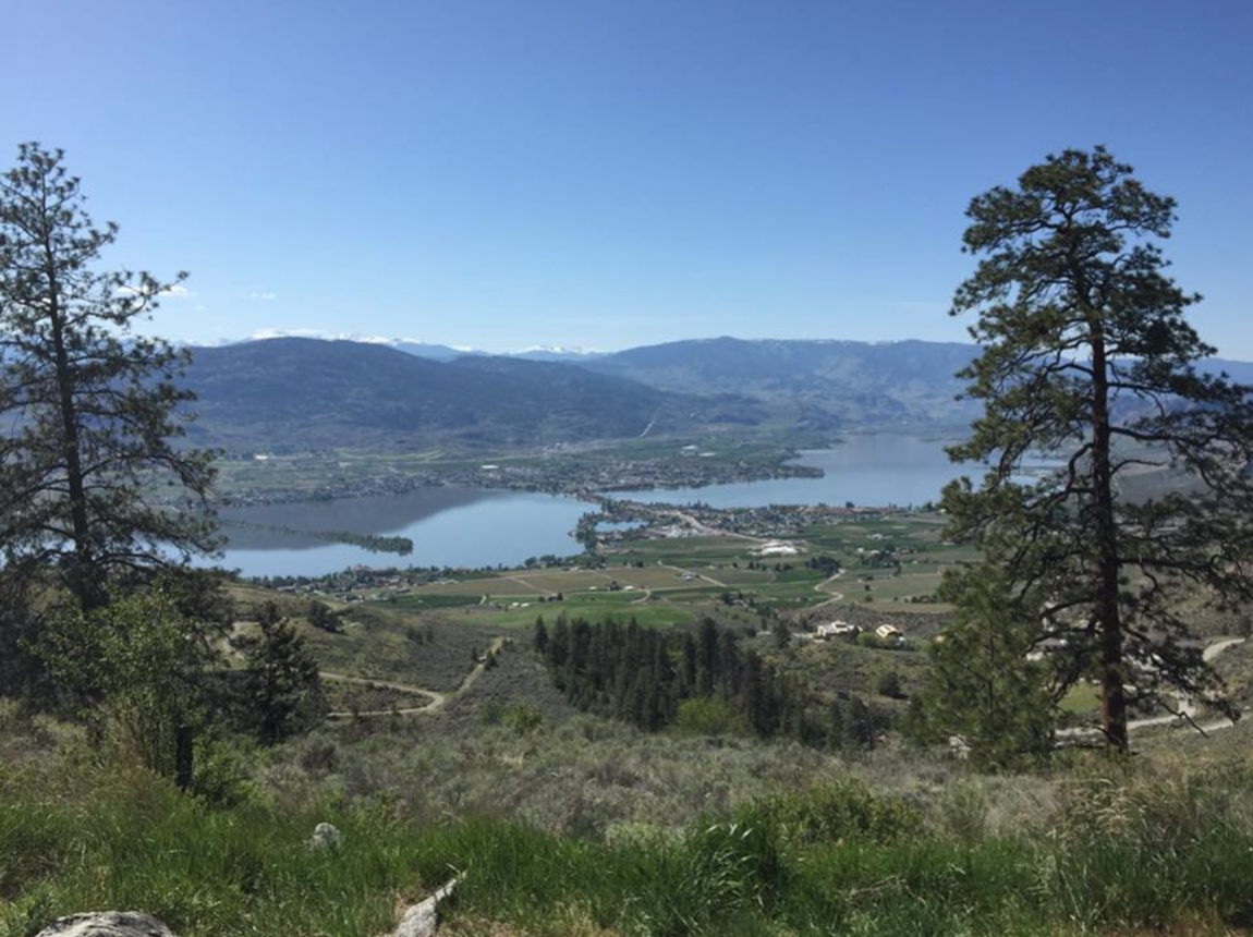 Beautiful view of Osoyoos, British Columbia during a hike.